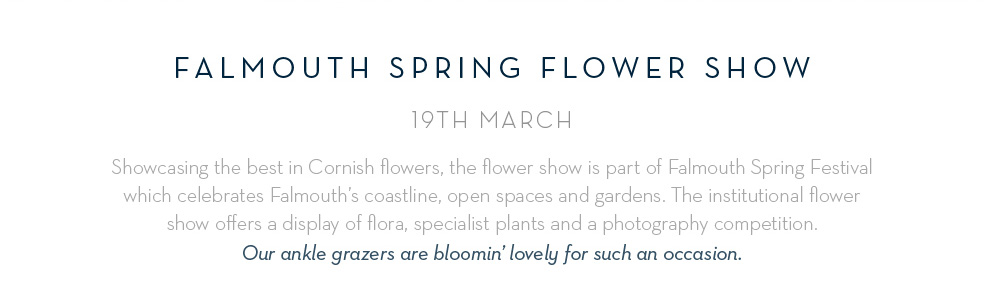 Falmouth Spring Flower Show - 19th March