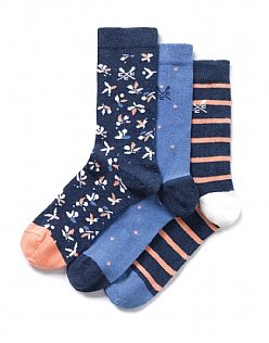 3 Pack Dandy Socks